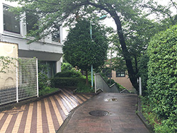 densyo_tamagawa_11